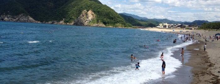 浜坂県民サンビーチ is one of 日本の白砂青松100選.
