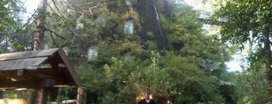 Hotel Montaña Magica is one of Hopefully, I'll visit these places one day....