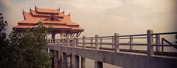 ร้านพลับพลาซีฟู๊ด is one of Surat Thani-Nakhon Sithammarat.
