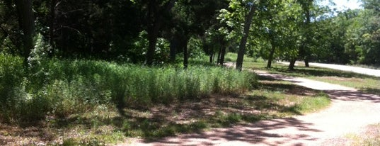 Brushy Creek Jogging Trails is one of Great Running Trails in Austin.