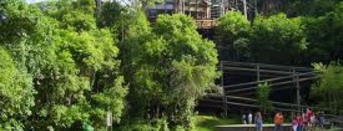 UNILIVRE - Universidade Livre do Meio Ambiente is one of Descobrindo Curitiba.