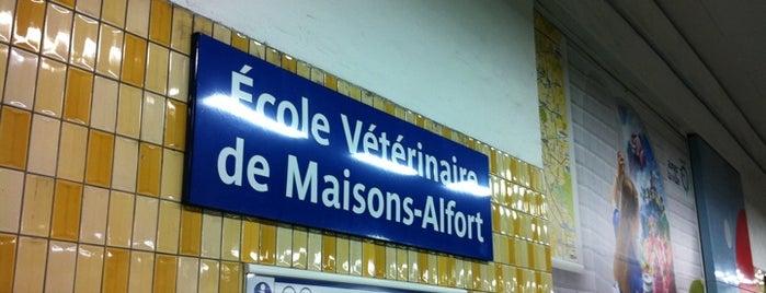 Métro École Vétérinaire de Maisons-Alfort [8] is one of Vincennes: in laws hometown ♥.