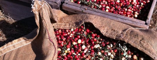 AD Makepeace Cranberry Harvest is one of Orte, die Cynthia gefallen.