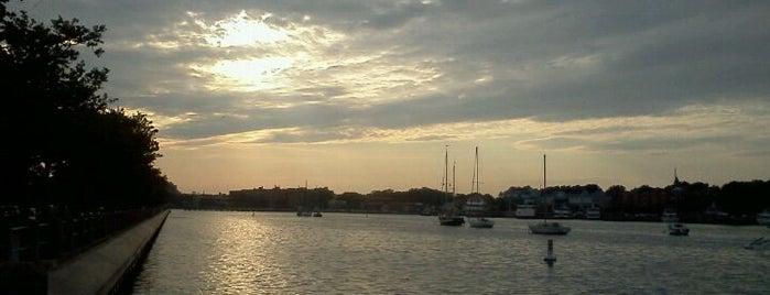 Emmons Bay is one of Lugares favoritos de Michael.