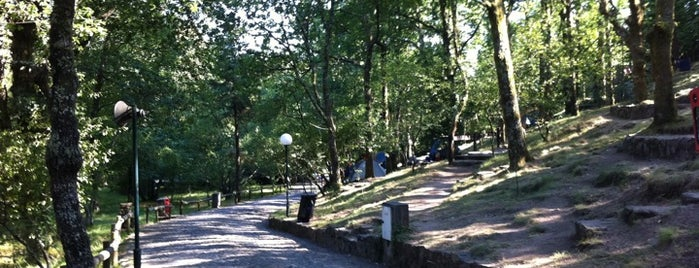 Parque da Cerdeira is one of Porto.