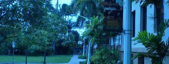 University of Hawai'i at Mānoa is one of Honolulu: The Big Pineapple #4sqCities.