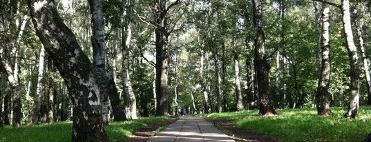 Парк Отдыха Ветеранов (Вагоноремонт) is one of Сады и парки Москвы.