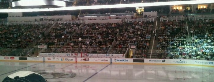 PPG Paints Arena is one of NHL HOCKEY ARENAS.
