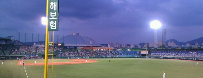 Hanwha Life Insurance Eagles Park is one of KBO Baseball Stadiums for Triple play badge.