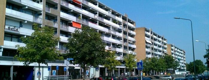 Winkelcentrum Daalhof is one of Uitstap idee.