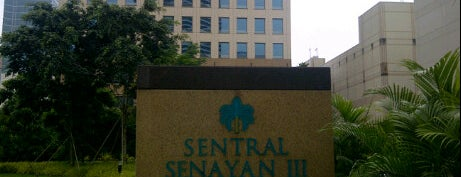 BII is one of Senayan Areas: My Playground, Workplace and Home.