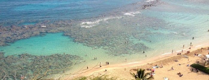 Hanauma Bay Nature Preserve is one of Oahu: The Gathering Place.