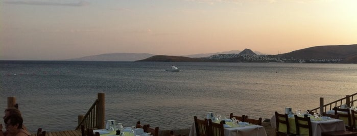 Gebora Balık Restaurant is one of Bodrum.