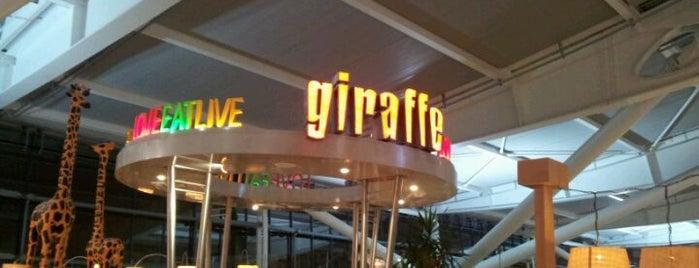 Giraffe is one of Lieux qui ont plu à Dmitry.