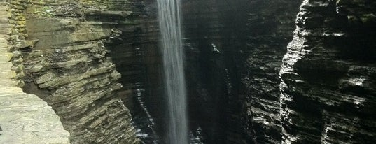 Watkins Glen State Park is one of New York.