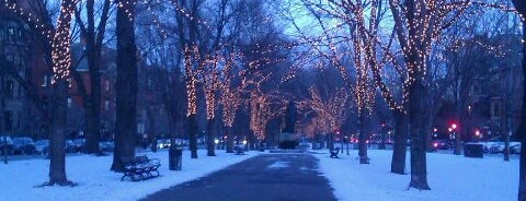 Commonwealth Avenue Mall is one of Boston Must Do.