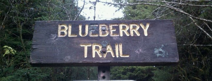 Blueberry Trial is one of The #AmazingRace 23 travel map.