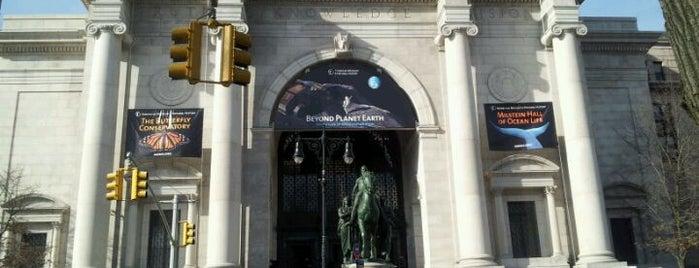 アメリカ自然史博物館 is one of Crazy Nights at NYC Museums.
