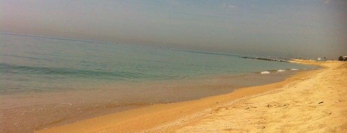Platja dels Tres Micos is one of Playas de España: Cataluña.