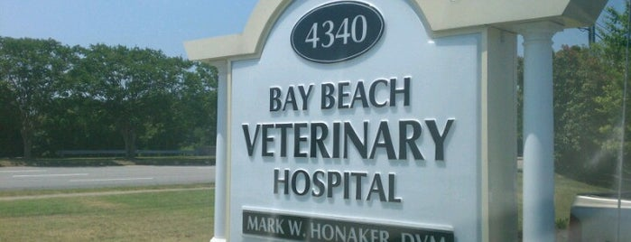 Bay Beach Veterinary Hospital is one of va beach // to check out.