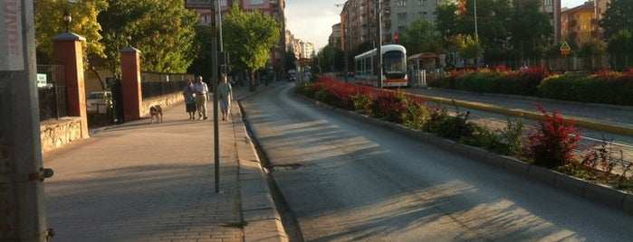 Vişnelik is one of A local's guide: 48 hours in Eskişehir.