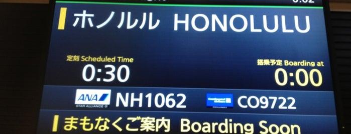 Gate 132 is one of 羽田空港 国際線 搭乗口.