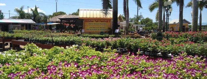 Southwest Ranches Farmer's Market is one of สถานที่ที่บันทึกไว้ของ HeidiHo.
