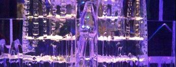 Icebarcelona is one of 101 llocs a veure a Barcelona abans de morir.