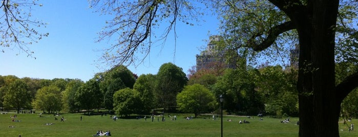 Prospect Park is one of NY To Do.