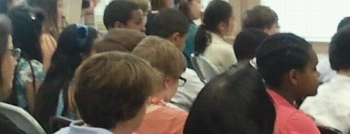 TOPS at Seward Public School is one of Option Schools.