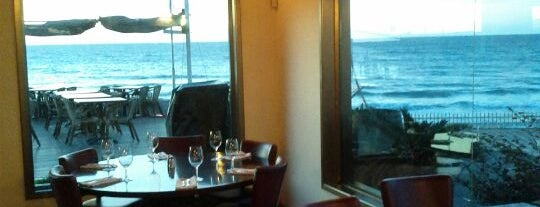 TLV Beach Restaurants