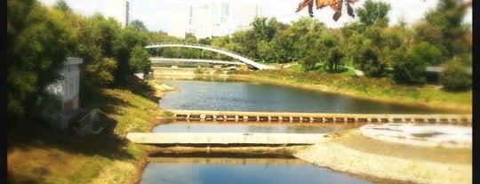 Черкизовский (Архиерейский) пруд is one of Dianaさんのお気に入りスポット.