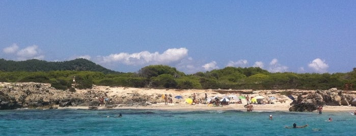 Platja Ses Salines is one of Guide to Ibiza's best spots.