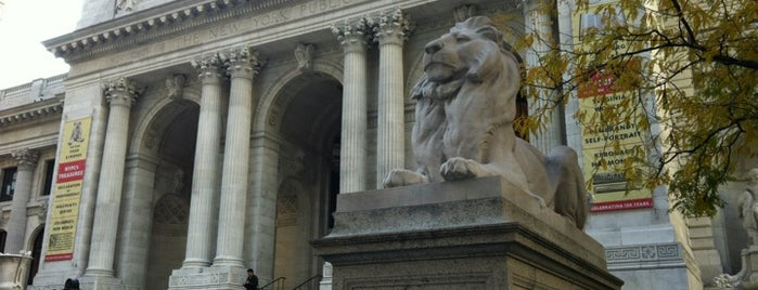 New York Public Library is one of Fun Places in NYC Metro-Area.