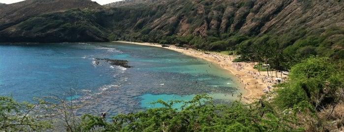 Hanauma Bay Nature Preserve is one of Honolulu: The Big Pineapple #4sqCities.