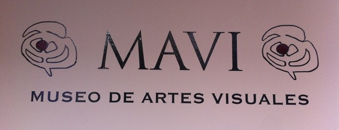 Museo de Artes Visuales is one of Santiago.