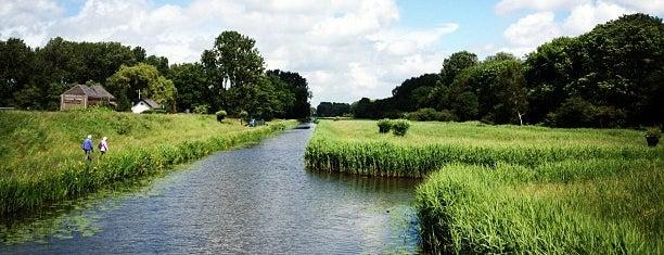 Delftse Hout is one of สถานที่ที่ Thomas ถูกใจ.