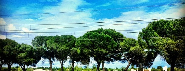 Pinar de Antequera is one of Lugares al aire libre.