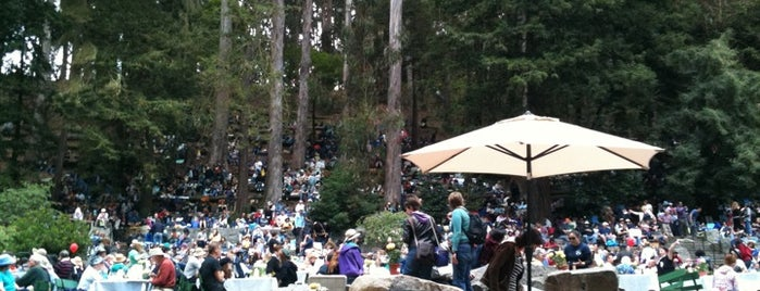 Sigmund Stern Grove is one of Must-visit Parks in San Francisco.