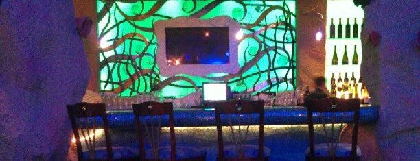 Denver Aquarium - The Dive Lounge is one of Mo'nun Beğendiği Mekanlar.