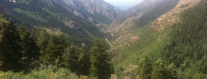 Big Cottonwood Canyon is one of Orte, die Chia gefallen.