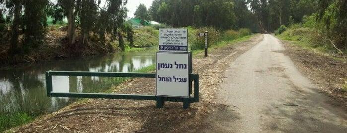 שביל נחל נעמן is one of Orte, die Ron gefallen.