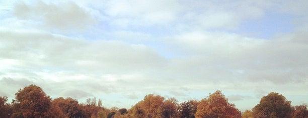 하이드 파크 is one of Stuff I want to see and redo in London.