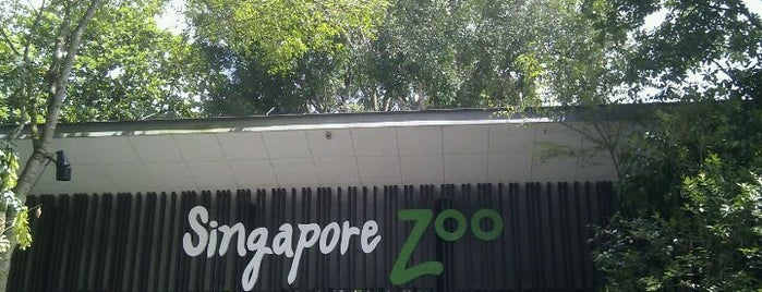 Singapore Zoo is one of 子連れでシンガポール観光.