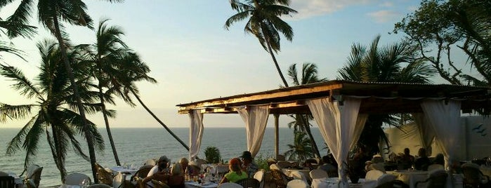 Thalassa Greek Taverna is one of north goa.