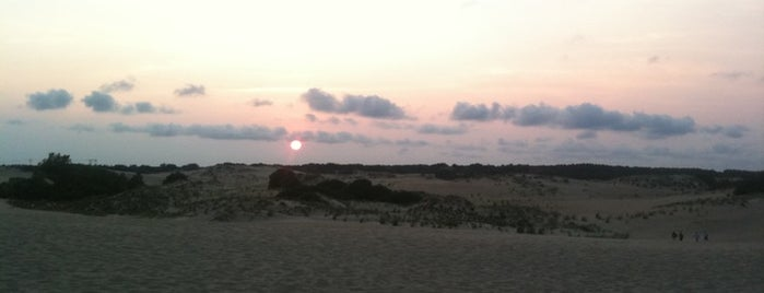 Jockey's Ridge State Park is one of Best Places to Check out in United States Pt 1.