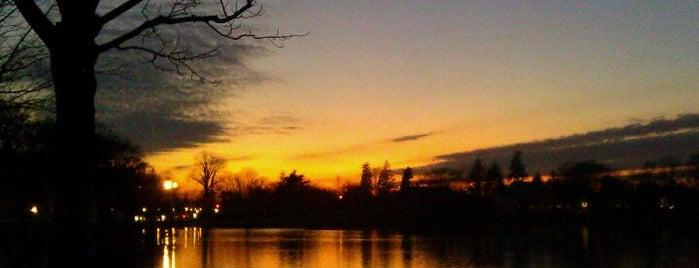 Argyle Lake Park is one of Lieux qui ont plu à Lynn.