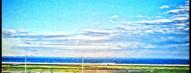 Международный аэропорт Токио (Ханэда) (HND) is one of Airports I've flown thru.