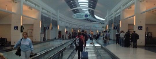 Jacksonville International Airport (JAX) is one of Airports - worldwide.