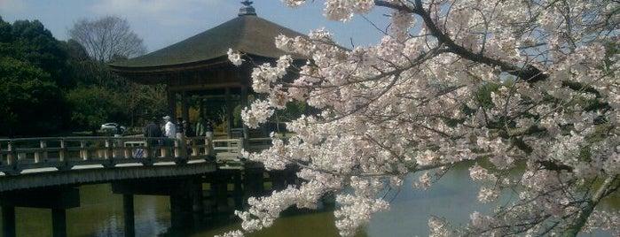 Ukimido is one of Orte, die Shigeo gefallen.
